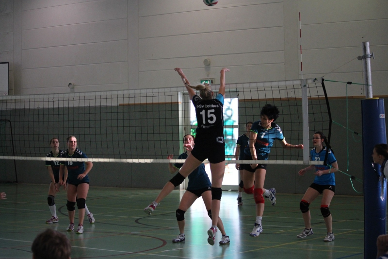 hsv cottbus volleyball