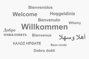 Herzlich Willkommen bei den Volleyballern des USV Potsdam!