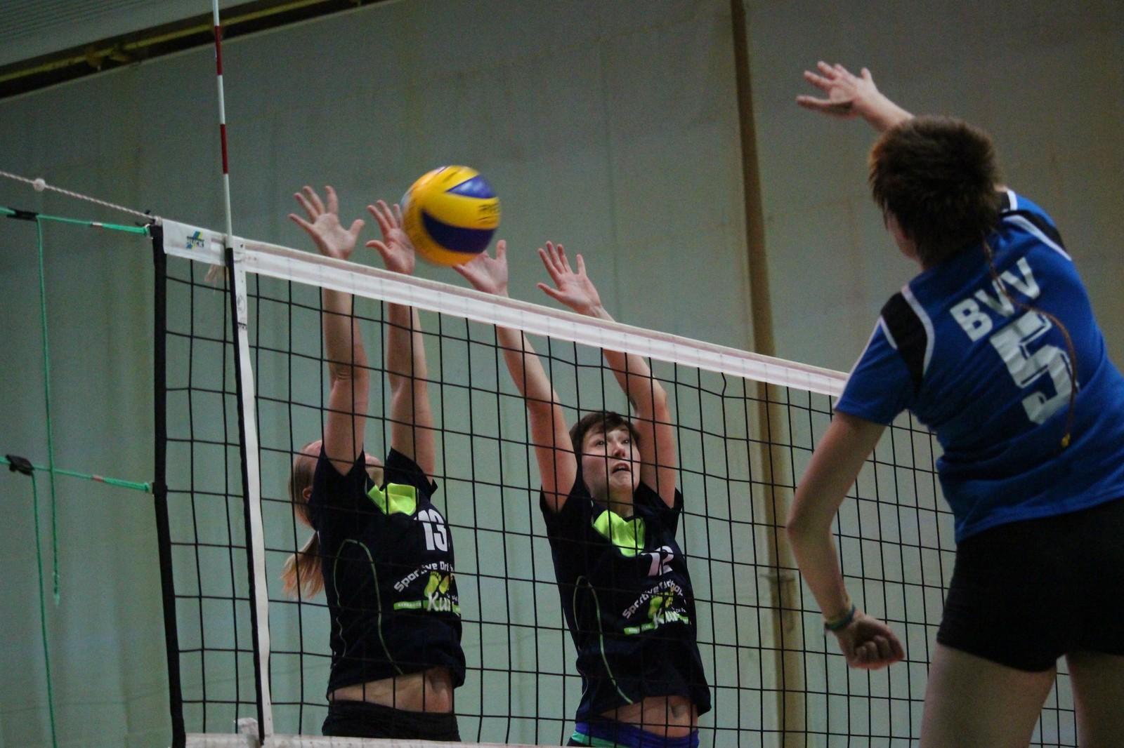 regionalliga nordost volleyball herren