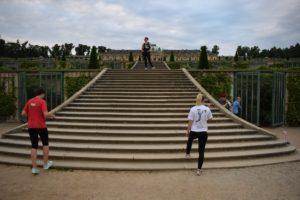 Alle Jahre wieder: Die Treppen am Schloss Sanssoucci als Trainingsstätte